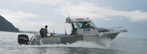 Kaikoura Marine Tours